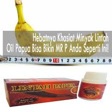 hebatnya khasiat minyak lintah oil papua bisa bikin mr p anda