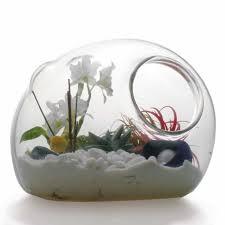 threads news update terrarium garden art in glass
