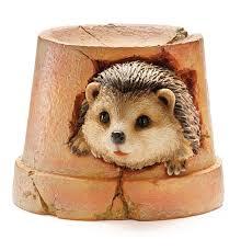 19 best garden with hedgehogs images on hedgehog