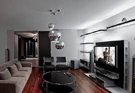 Apartment Living Room Decorating Ideas Pictures Luxury Apartment - Cozy family room decorating ideas