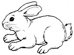 simple drawing of a rabbit drawing art gallery