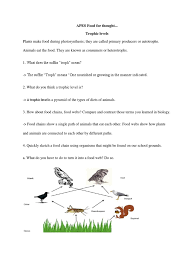 Food Chains Worksheet Apes Food For Thought Food Web Soybean