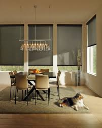 Modern Window Blinds And Shades - best 25 hunter douglas ideas on pinterest hunter douglas blinds