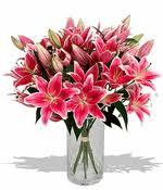 flowers dallas downtown dallas flower florist shop tx orchids flowers