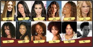 Hair Types by Hair Type Chart Cbd Hemp Products Chebe Hair Growth