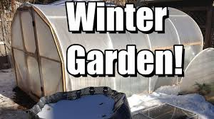 top 6 tips for your first winter vegetable garden