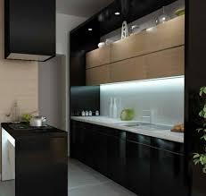 contemporary kitchen 15 contemporary kitchen with black cabinets rilane