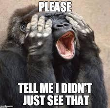 Meme My Picture - my eyes gorilla memes imgflip
