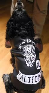 Soa Halloween Costume Sons Anarchy Dog Costume