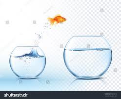 Jumping Light Goldfish Jumping Out One Fishbowl Another Stock Vector 370873319
