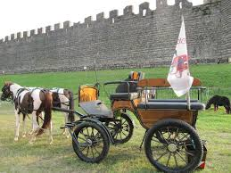 carrozze in vendita carrozza e cavalli a ponso kijiji annunci di ebay