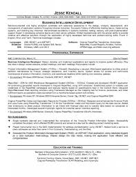 Resumes Templates Online Spong Resume Resume Templates Online Resume Builder Resume