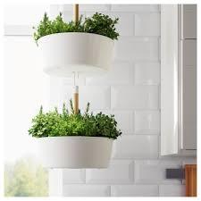 Window Box For Herbs Bittergurka Hanging Planter Ikea