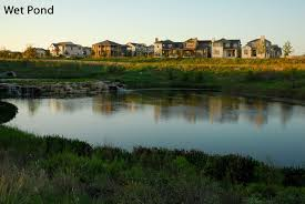 native pond plants powers of green cityscape of the future texas enterprise