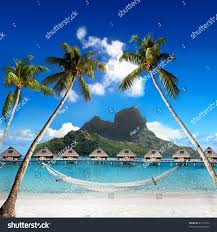 view otemanu mountain through palms hammock stock photo 81211012