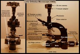 Parts Of A Compound Light Microscope Mic Uk Light Microscopy And Photomicrography