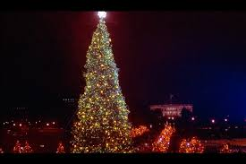 the national christmas tree after the lighting ceremony december