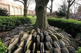 the hardy tree an early work of a great novelist kuriositas