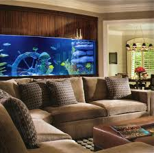 home decorating forums bedroom surprising oscar fish advice forum cant all have rooms