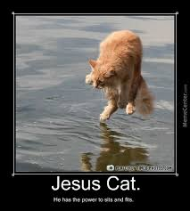 Jesus Cat Meme - jesus cat walking on water by crazycarly meme center