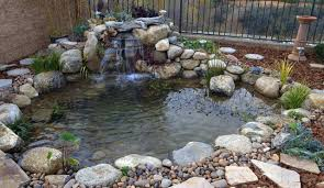 enchanting landscape for sensational backyard pond pictures with