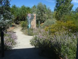 landscaping with australian native plants stop the miners you can help australia u0027s birds by planting native