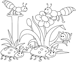 printable 40 preschool coloring pages spring 8130 spring bugs