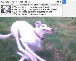 Fast Meme - very fast doggo very fast doggo running at incredible hihg speed