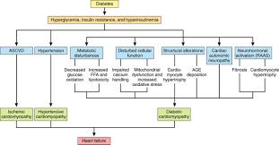 clinical update cardiovascular disease in diabetes mellitus