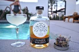 lychee martini bottle pomp u0026 whimsy gin liqueur u0026 a vesper variation bit by a fox