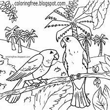 100 birds printables bird nature study series free