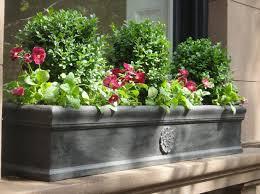 blumen fã r balkon 31 besten blumenkasten bilder auf gardening deko und