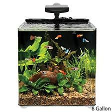 Fish Tank Desk by Amazon Com Aqueon Aqe17102 Evolve Desk Top Aquariums Tank 8