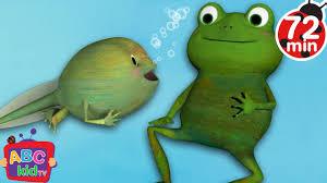 frog song more nursery rhymes u0026 kids songs abckidtv youtube