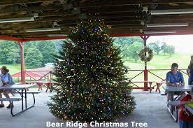 bear ridge celebrates christmas in july