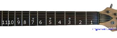 electric guitar parts diagram string finger numbering and etc