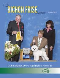 bichon frise therapy dog bichon back issues