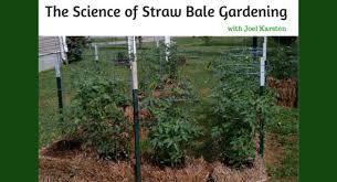 the science of straw bale gardening with joel karsten back to my