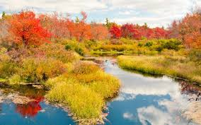 places fall foliage united states travel