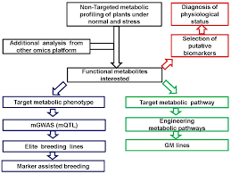 ijms free full text plant metabolomics an indispensable