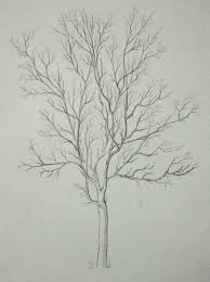 25 unique tree drawing simple ideas on pinterest trees drawing