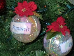 healthy crafty acrylic fillable ornaments
