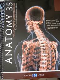 anatomy 35 human anatomy laboratory manual first edition for mt