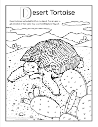 desert lizard coloring page awesome chameleon coloring pages free coloring book