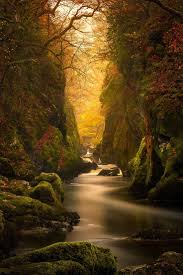 1268 best trail mix images on pinterest landscapes nature and fall
