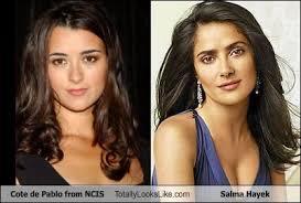 Salma Hayek Meme - cote de pablo from ncis totally looks like salma hayek cheezburger