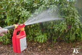 backyard mosquito spray home outdoor decoration