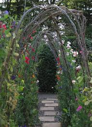 How To Make Trellis For Peas Language Of Flowers April U0027s Sweet Pea U2014 Glamour Drops