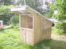 horsekeeper u0027s duck hut backyard chickens