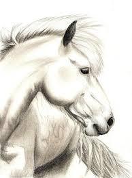 war horse sketch by yankeestyle94 on deviantart